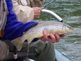 April-,May-2006--Turkey-hunts-and-fishing-001.jpg