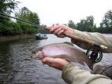 troutbum-photo\'s-Connecticut-river-July-8th,2006-007.jpg